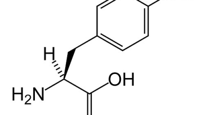 Everything You Need To Know About L-Tyrosine
