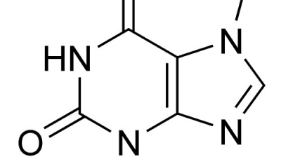 Everything You Need To Know About Theobromine