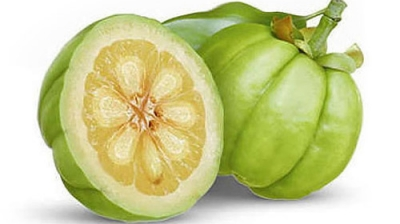 Everything You Need To Know About Garcinia Cambogia