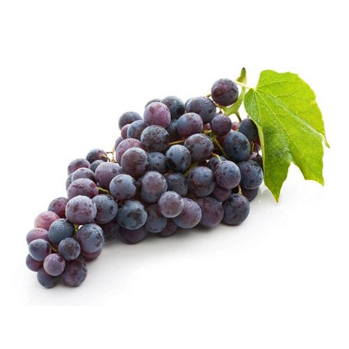 Everything You Need To Know About Grapes