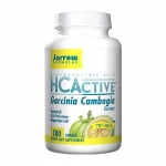 HCActive Review