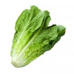 Better Choice: Lettuce Leaves vs. Hamburger Buns