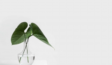 3 Ways To Become A Minimalist And De-Clutter Your World