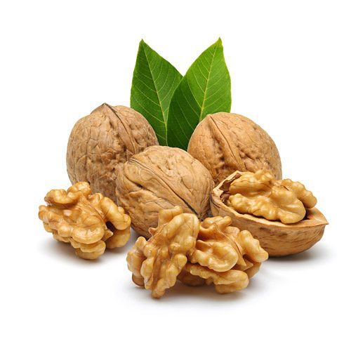 Everything You Need To Know About Walnuts